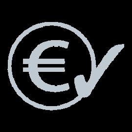 Volle Kostenkontrolle durch monatliche Miete der Videokonferenz-Lösungen und Medientechnik von conference-tv. Symbolisiert durch ein Eurozeichen und einen erledigt Haken